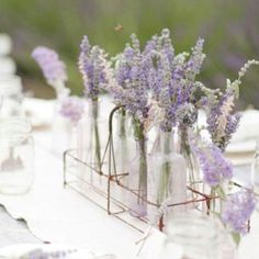love everything about lavender