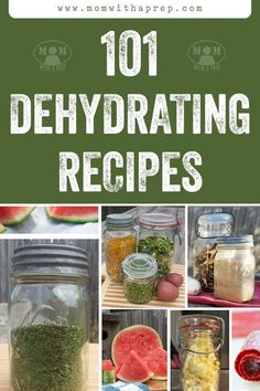 Are you looking for a huge list of dehydrating recipes? We have you covered! Check out our favorite dehydrating recipes and let us know which ones you think are best. Happy dehydrating!  #dehydratingrecipes #dehydrating #dehydratingmeals #healthydehydrating #dehydratingforkids