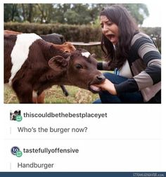 Thiscouldbethebestplace: Who's the burger now? Tastefullyoffensive:Handburger
