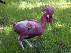 naked chicken - Google Search