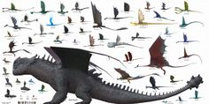 HTTYD Size Chart (School of Dragons Edition) Httyd Dragons, Dreamworks Dragons, Dragons Edge, Book Of Dragons, Pics Of Dragons, How To Train Dragon, How To Train Your, Fantasy Creatures, Mythical Creatures