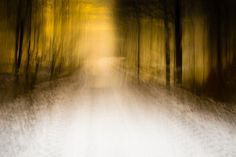road by chrisfriel, via Flickr