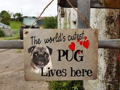 pug dog sign - door sign - metal - hanging - window - house sign - welcome - vintage - the world's cutest pug lives here - x Cute Pugs, Dog Signs, Pug Life, Window, Metal, Dogs, Vintage, Windows, Doggies