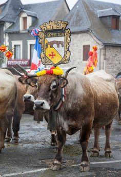Aveyron, Saint-Côme-d'Olt