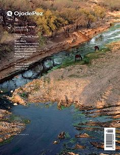 Castel Volturno project is featured in Ojodepez Magazine 36 LANDSCAPES as portfolio shortlisted at PhotoEspana '13