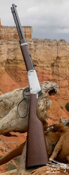 Henry lever action rifle. Henry Frontier octagonal barrel and large loop lever at Bryce Canyon National Park.