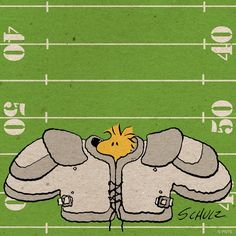 Woodstock as a football player Peanuts Cartoon, Cartoon Tv, Peanuts Snoopy, Snoopy Love, Snoopy And Woodstock, Peanuts Characters, Cartoon Characters, Funny Day Quotes, Sanrio