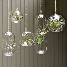 Hanging glass holders Just like glass pendant lights look great when a few are hung together at different lengths, the same principle applies here. This type of arrangement works well in a corner of a room or even hanging over the island bench in a kitchen. The twine string adds to the organic look, or choose a metal chain instead if you want to give it a more industrial feel.