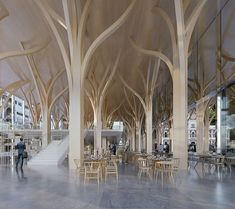 Discover recipes, home ideas, style inspiration and other ideas to try. Shigeru Ban, Parametric Architecture, Wood Architecture, Sustainable Architecture, Pavilion Architecture, Ancient Architecture, Pillar Design, Ecology Design, Architecture Concept Drawings