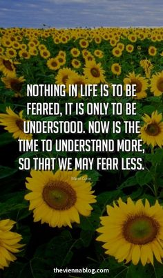 We never know what the future holds, what is waiting for us out there. Fear not because God is always near. Leadership Lessons, Leadership Quotes, Success Quotes, Life Quotes, Qoutes, Uplifting Quotes, Meaningful Quotes, Inspirational Quotes, Life Coach Certification