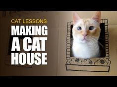 Cats need something to scratch and destroy. A two-storey cardboard house can be the best solution to protect your furniture. More info on how to make it? Wood Dog House, Cat House Diy, Matilda, Diy Cat Tent, Cardboard Cat House, Diy Cardboard, Dog House Plans, Cat Towers, Cats Diy