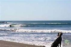 best nicaragua surf breaks  images share it