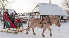 Oplev jul som i gamle dage på Hjerl Hede