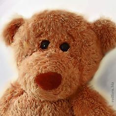 Toby Bear Healing Light, White Light, Whimsical, Meditation, Teddy Bear, Blog, Design, Blogging