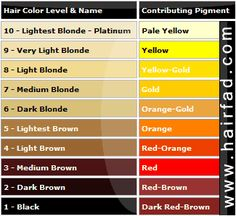 Hair colour levels and undertones  Google Image Result for http://www.hairfad.com/images/hair-color-chart.png