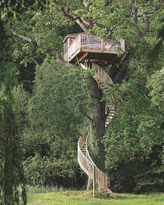 34 Stunning Tree House Designs You Never Seen Before Beautiful Tree Houses, Cool Tree Houses, Tree House Plans, Tree House Designs, Tree Tops, In The Tree, Victorian Homes, Play Houses, Cabana