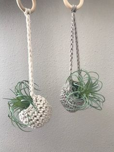 Mini air plant hanger, Air plant holder, Crocheted Airplant Hanger, Boho Decor - All For Herbs And Plants Crochet Plant Hanger, Macrame Plant Holder, Macrame Plant Hangers, Plant Holders, Air Plant Display, Crochet Supplies, Macrame Design, Macrame Projects, Macrame Patterns