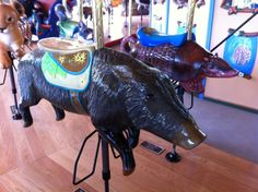 peccary at conservation carousel at Los Angeles Zoo, photo by Libby Teal
