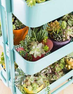 Ikea Raskog, Raskog Cart, Vertical Garden Planters, Balcony Garden, Indoor Garden, Indoor Plants, Herb Garden, Small Plants, Potted Plants