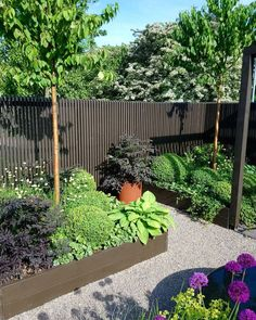 Hemma hos Karolina Brising och Anders Hörnell i Dalby Small Courtyard Gardens, Back Gardens, Balcony Garden, Outdoor Gardens, Summer Garden, Home And Garden, Backyard, Patio, Natural Garden
