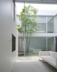S House (2011) by Shinici Ogawa & Associates located in Tokyo Japan. Within a calm residential area in Tokyo this house has two contrasting faces; an intimate introverted closed house with courtyard and an outward looking open glasshouse above. #japan #japanese #courtyard #glass #tree #plants
