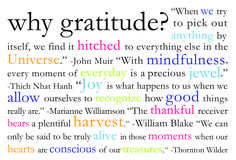 Seven Day Gratitude Project…You Are Up!