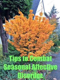 Fighting Seasonal Affective Disorder