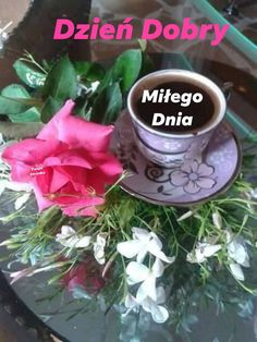 Tea Cups, Tableware, Plants, Dinnerware, Dishes, Flora, Plant, Place Settings, Teacup