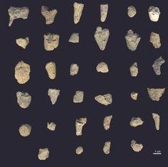 Ceramics artifacts, found in Croatia, 15,000 - 17,500 years old