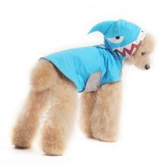 Shark style dog raincoat Watch out! It's the land shark! This waterproof dog raincoat is made in blue with a shark designed hood and dual back pockets. Dog Raincoat, Raincoats For Women, York Dog, Designer Dog Clothes, Puppy Clothes, Dog Travel, Outdoor Dog, Costumes, Pets