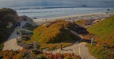 Garrapata State Park em Carmel na cidade de Monterey #viagem #california
