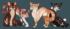 Bramblestar, Tawnypelt, Mothwing and Hawkfrost