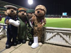 4 very happy Hero Bears celebrate Team victory over the Rest of the World Rest Of The World, Cricket, Victorious, Garden Sculpture, Bears, Celebrities, Happy, Outdoor Decor, Celebs