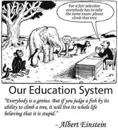 Our wonderful education system