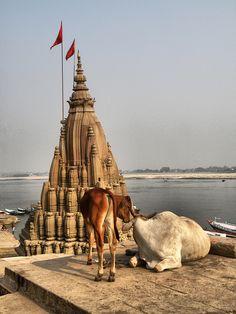 Interesting Varanasi - http://www.travelandtransitions.com/destinations/destination-advice/asia/