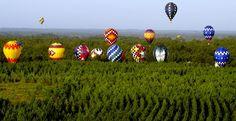 Воздушные шарики, наполненные обычным воздухом, водой или газом, служат украшением, используются для развлечения или поминовения умерших, а огромные воздушные шары, которые можно увидеть на фестивалях воздухоплавания, просто радуют глаз. В данной подборке собраны фотографии больших и малых воздушных шаров. (25 фотографий)