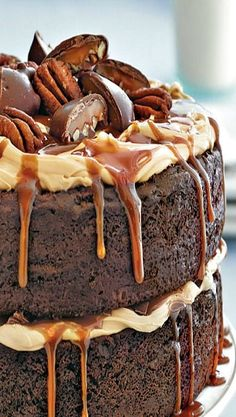 Chocolate Turtle Cake - Layers of chocolate cake, pikes of frosting and drizzled caramel, topped with turtle candies.