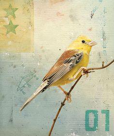 Bird No.4, 2008 by Kareem Rizk, via Flickr