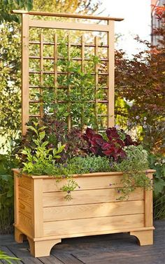 Landscape Design Backyard Privacy Planter Boxes New Ideas Planter Box With Trellis, Diy Planter Box, Diy Trellis, Garden Trellis, Garden Beds, Garden Fencing, Trellis Ideas, Trellis Design, Garden Care