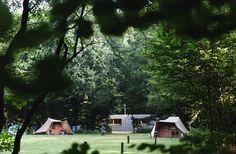 Kamperen op de Veluwe in de natuur bij Staatsbosbeheer