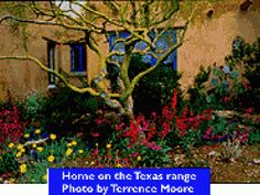 Good website for plant ideas.      The Great Xeriscape  Just about everything's big in Texas. But when it comes to water, well, there's little to speak of. So how do some Texas homeowners reconcile their desire for vast green yards with a shortage of H2O? The answer is xeriscaping -- a very big word indeed.    Derived from the Greek word xeros, meaning dry, xeriscaping is a form of landscaping that's miserly with water