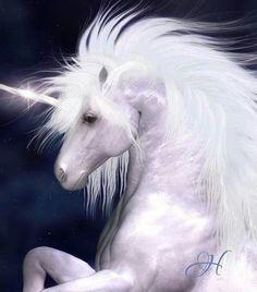 Wish Unicorns were real. Beautiful.