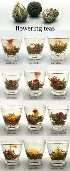 Flowering teas...tried this at a dim sum house in Dubai. Very pretty.