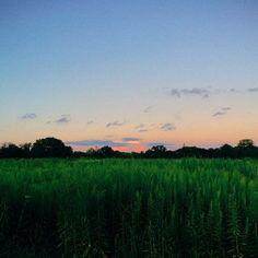 Twilight at Sunnyside in New Jersey. Photo courtesy of andrewgaro on Instagram.