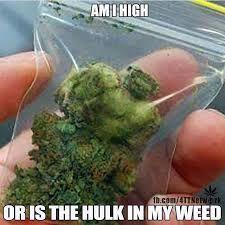 #stonernation #instaweed #MME #cannabis #weed #marijuana #mmj #pot #high #funny #meme #thehulk #marvel #hulk
