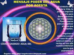 19 Ideas De Calendario Lunar 2017 Libro De Las Sombras Calendario Lunar Hechizos Y Conjuros