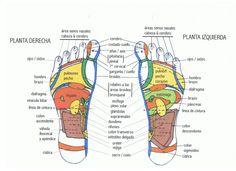 reflexología podal, reflexoterapia en los pies para relajarse y aliviar dolores físicos y emocionales  #reflexologia #reflexologiapodal #reflexoterapia #pies   http://www.jingchishen.org/reflexoterapia-reflexologia-podal-para-relajarse-y-aliviar-dolores-fisicos-y-emocionales