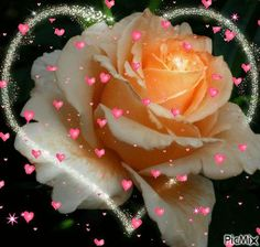 http://img1.picmix.com/output/pic/normal/9/6/3/2/3572369_7f4eb.gif?utm_source=facebook.com