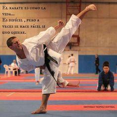 Now that's a karate kick!