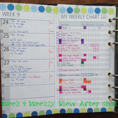 January Monthly Chart Before Shot Filofax Daytimer Franklin